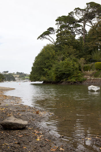 Calm Helford River Riverside Rock Tranquil Tranquility Trees Boat Day Dinghy Estuary Helford Nature Peaceful River Riverscape Tree Water