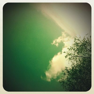 #tree #igers_uk #sky #cloud #bedsigers #instagood #sun Sun Sky Tree Cloud Instagood Bedsigers Igers_uk