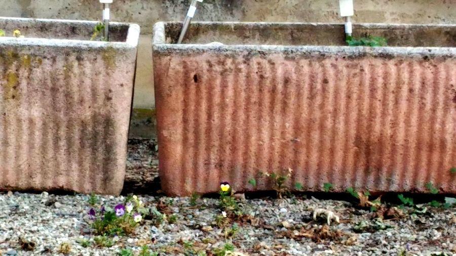 Close-up of corrugated iron