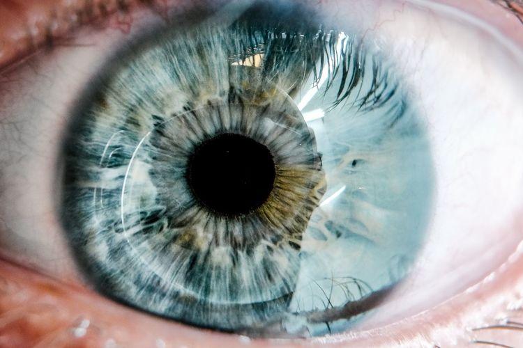 His eyes Human Eye Eye Eyelash Sensory Perception Human Body Part Eyesight One Person Body Part Close-up Iris - Eye Eyeball Portrait Looking At Camera Unrecognizable Person Blue Eyes Real People Extreme Close-up Macro Reflection Eyelid