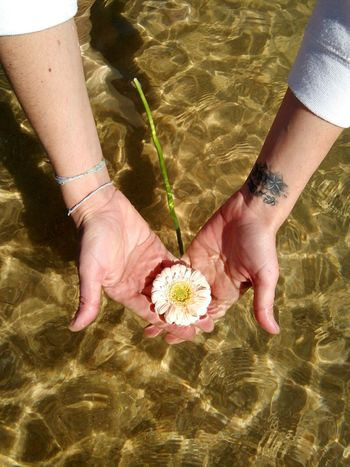 Togethernes Day Human Hands One Woman Only Flowers People Outdoors Water Sea Sand Peaceful Place Peacefull Human Body Part Close-up Water Sea