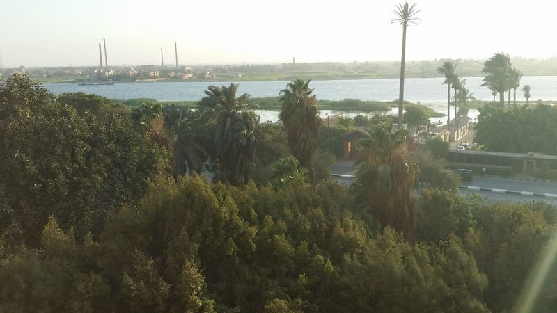 Cairo Cairo Nile Day Shots Growth Helwan High Point Shopping Tranquility
