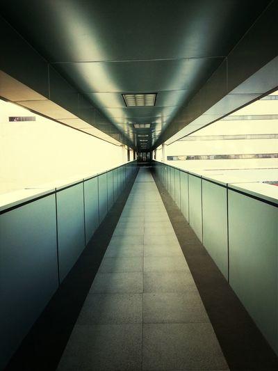Túnel rutinario