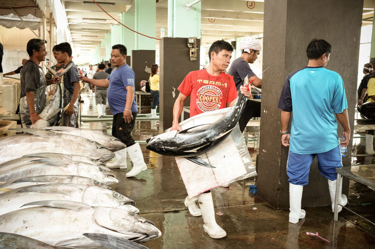Busy Day at the Market: a man carries a 50kg yellowfin tuna to the delivery container. The Photojournalist - 2017 EyeEm Awards Medium Group Of People Full Length People Adult Day Only Men Fresh Real People Fish Market Market Seafood Occupation Raw Food Eyeem Philippines Tuna Processing Yellowfin Tuna Fish Monger Fisherman Raw Fish Tuna Action