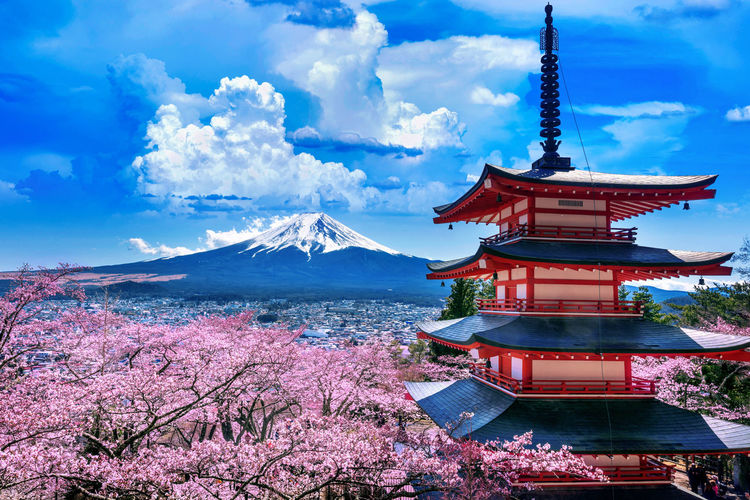 Cherry blossoms in spring, Chureito pagoda and Fuji mountain in Japan. Cloud - Sky Sky Architecture Nature Built Structure Religion Mountain Place Of Worship No People Belief Water Building Building Exterior Spirituality Beauty In Nature Day Plant Travel Destinations Scenics - Nature Outdoors Shrine Cherry Blossom Snowcapped Mountain Spire