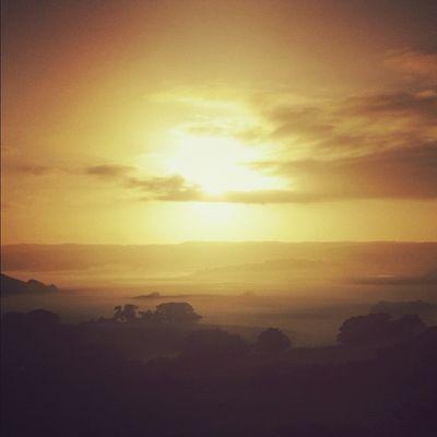 Sunrise in the Otways. #roadtripbsides Greatoceanroad Lachlanpayneawesomeamazingphotosbestinstagramereverfollowmenow Payneroadtrip Roadtripbsides