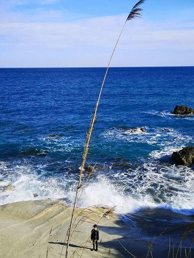 Fishing rod on beach against sky