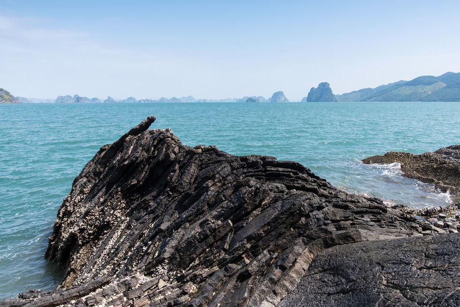 Bai Tu Long Bay Ha Long Rock Animal Themes Animals In The Wild Beauty In Nature Bird Clear Sky Day Ha Long Bay Horizon Over Water Mountain Nature No People Outdoors Perching Rock - Object Scenics Sea Sky Tranquil Scene Tranquility Water