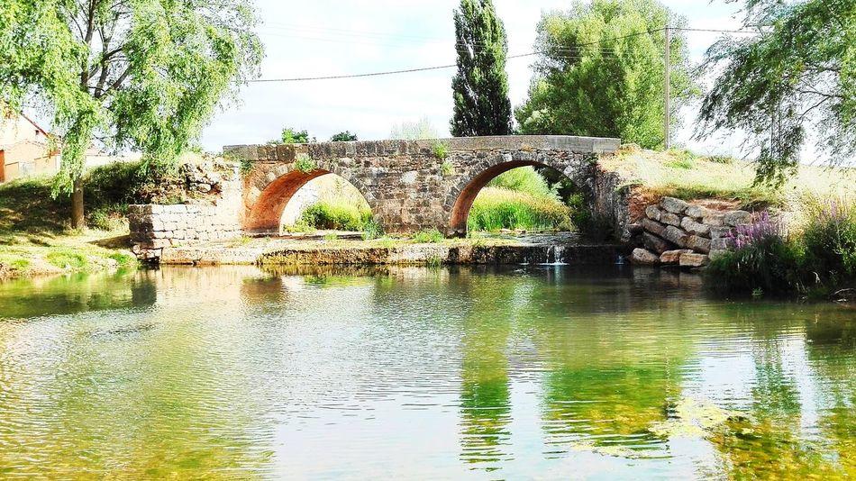 Rio Odra Villanueva De Odra Burgos Bridge Puente De Piedra River Water Reflections Rio Reflejos En El Agua Vegetacion Rural Village Rural View Paisaje Rural  Rio