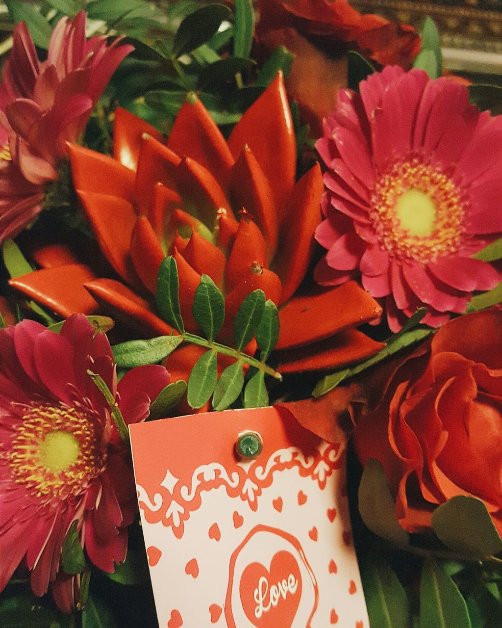 flower, beauty in nature, nature, plant, freshness, no people, leaf, fragility, petal, growth, close-up, flower head, indoors, red, day
