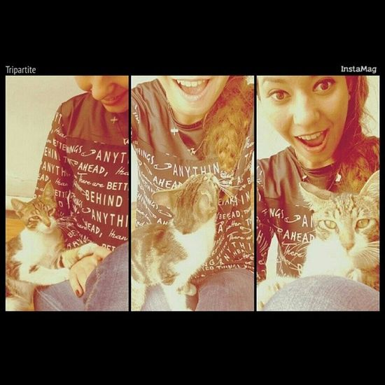 Kendini sevdirmek için sekilden sekle giren sevimli varlik ! SENI YERIM ! Cat♡