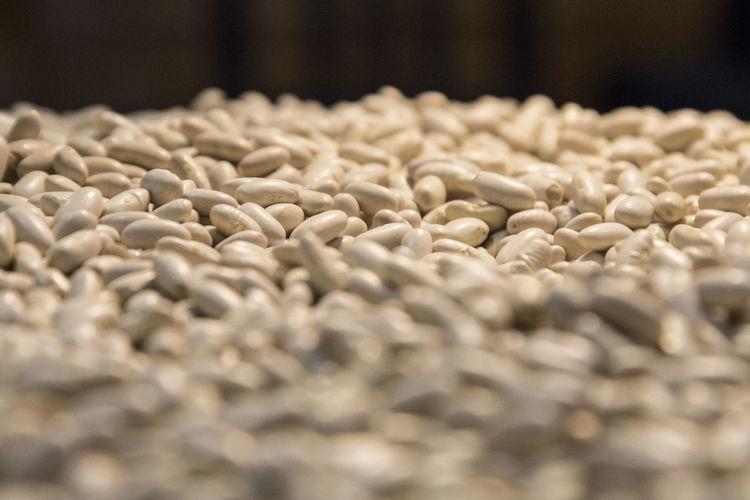 White Beans Beans Cocido Comida Food And Drink Judias Menu Abundance Alubias Alubias Blancas Alubiasblancas Bokeh Food Judias Blancas Selective Focus White Beans Food Stories