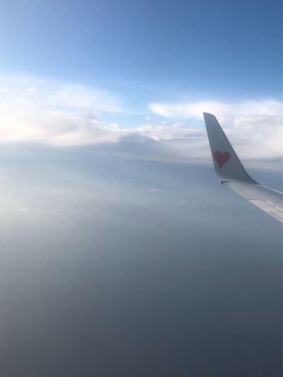 富士山雲のなか Skymark Airlines Skymark Air Vehicle Sky Cloud - Sky Airplane Transportation Mode Of Transportation Aircraft Wing