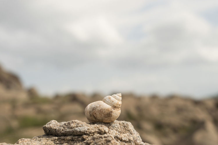Nature No People Environment Day Focus On Foreground Rock Sky Cloud - Sky Solid Close-up Land Rock - Object Landscape Tranquility Outdoors Copy Space Balance Beauty In Nature Travel
