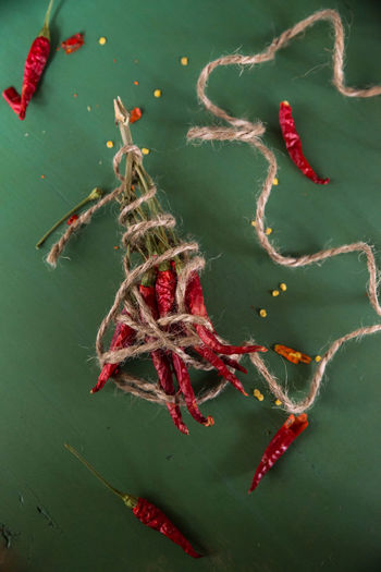 High angle view of red chili peppers tied with string on table