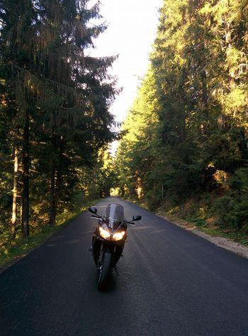 Riding. Apuseni Mountains, Romania Motorcycles Apuseni Motorbike Yamaha Fz1 Motorcycle