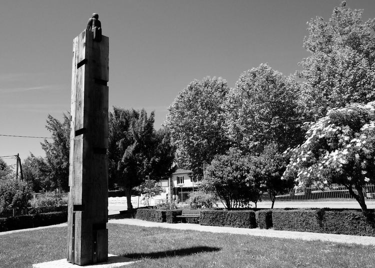 Memorial No People Tree Outdoors Clear Sky Wooden Post Nature Day Statue Monument Blackandwhite Black And White WeekOnEyeEm