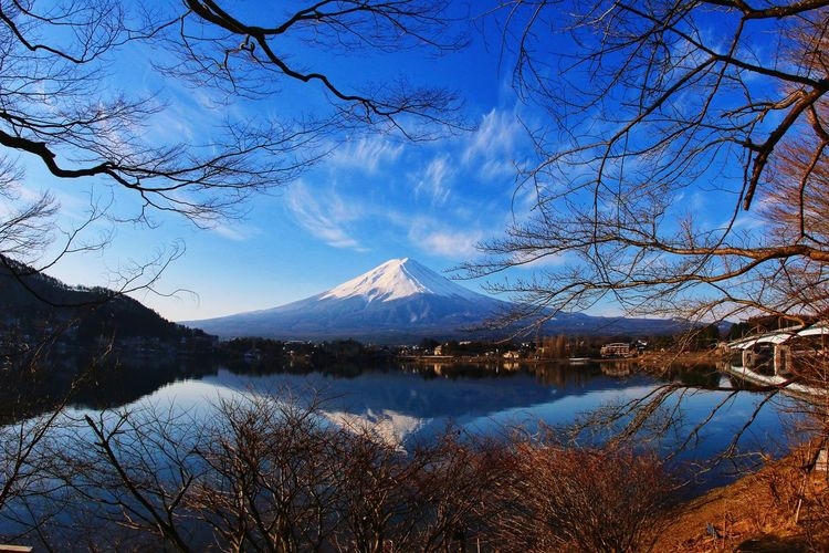 Mt.Fuji Reflection Lake Japannature Japantravel Canon Japan Tree Water Mountain Snow Lake Snowcapped Mountain Branch Reflection Sky Mountain Range Snow Covered Snowcapped Tranquil Scene Mountain Peak Tranquility Rocky Mountains Bare Tree