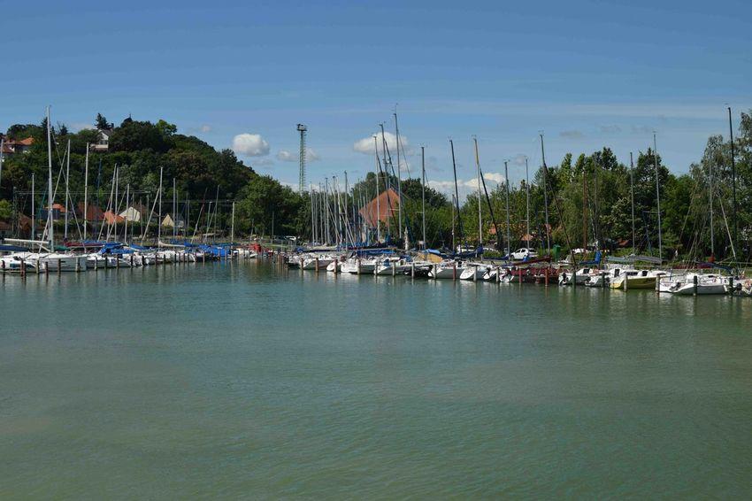 Water Nautical Vessel Tree Harbor Mast Moored Lake Marina Sky Architecture