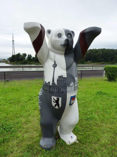 Berliner Bär Mauthausen Austria Austria ❤ Summer Green Blackandwhite Blcknwhite Black And White Black & White