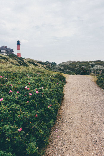 Beauty In Nature Cloud Cloud - Sky Day Flower Grass Growth Landscape Leuchtturm Lighthouse Lighttower Nature No People Northsea Outdoors Plant Red Scenics Sky Sylt Sylt Strand Sylt, Germany Sylt_collection Tranquil Scene Tranquility
