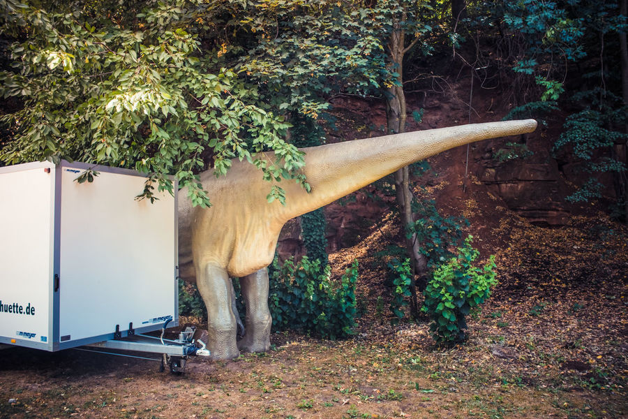 Paleo Parking Dinosaur Bum Parking Space in Kaiserslautern Germany The Week On EyeEm EyeEm X Photoville 2015: The Rise of Real Photography My Best Photo 2015