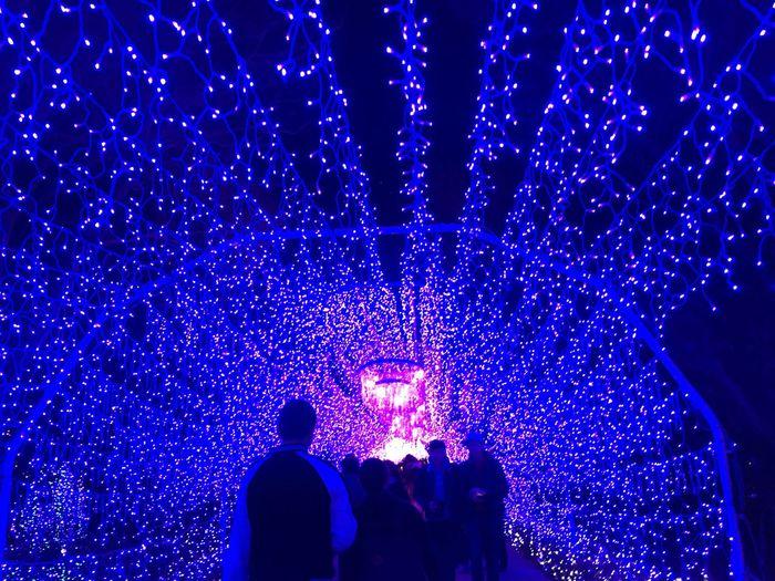 Enoshima Illumination Seacandle Japan
