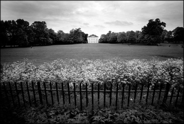 English Heritage Fencing Historical Building Landscape_photography Marble Hill House Park Party Pet Shop Boys Riverbank Soho House Summer Festival Tranquility