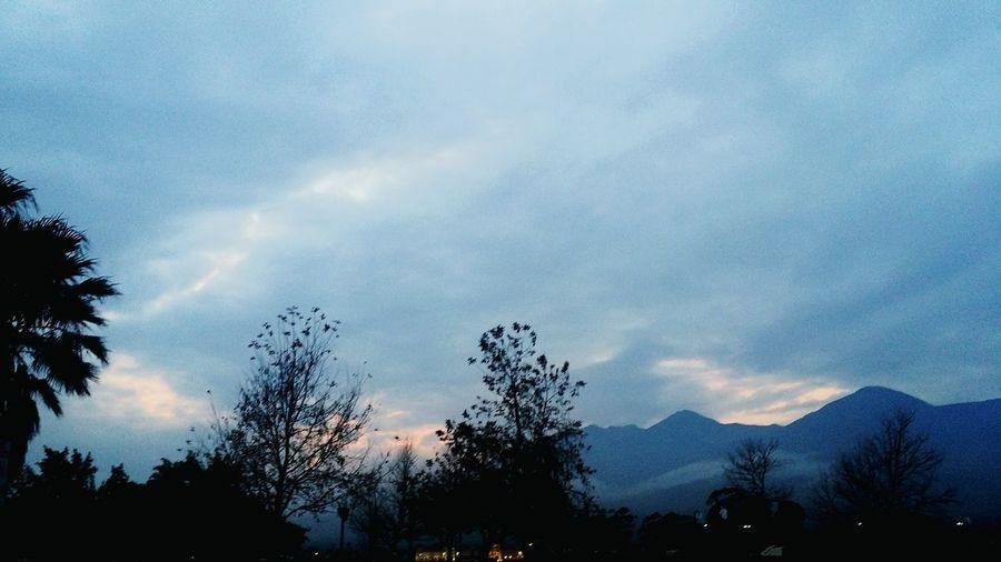 Dusk Dusk Sky Tree Mountain Silhouette Blue Sky Cloud - Sky Sky Only Countryside Treetop Cloudscape Stratosphere Cumulonimbus Cumulus Cloud Tranquil Scene Dramatic Sky Storm Cloud Calm