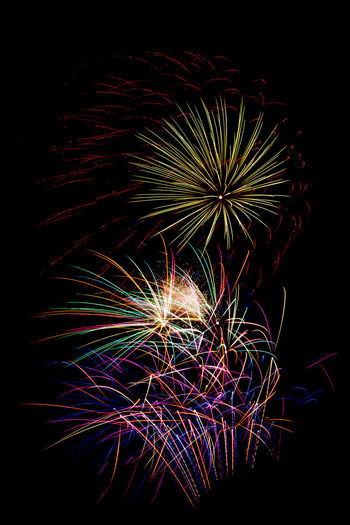 Fireworks on black night sky. Firework Display Photos. Arts Culture And Entertainment Celebration Event Exploding Firework Firework - Man Made Object Firework Display Illuminated Long Exposure Low Angle View Motion Multi Colored Night No People Outdoors Sky