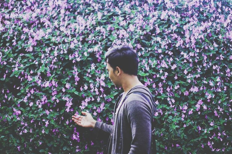 Full length of man standing on purple flowering plants