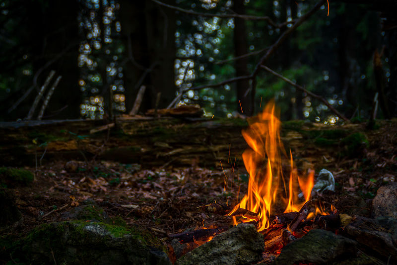 Campfire in the