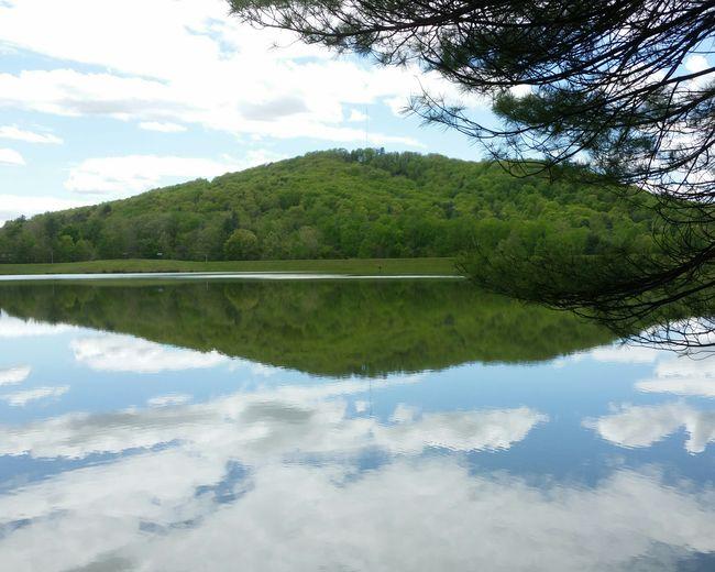 Lake Arrowhead Landscape Forest Non-urban Scene Clear Sky Blue Ridge Mountains Mountains Lush Foliage