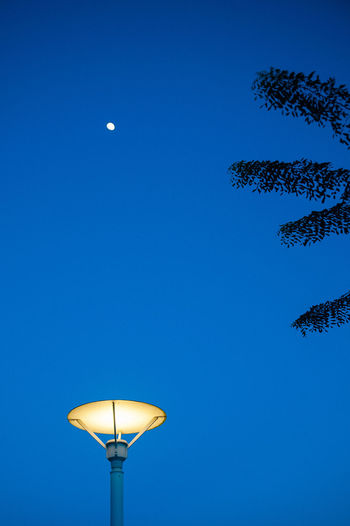 Beauty In Nature Blue Clear Sky Electric Lamp Electric Light Glowing Illuminated Moon Nature No People Outdoors Pole Scenics Sky Street Light Tranquility Tree
