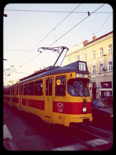Old Tram living legends in the Streets Of Belgrade