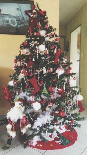 Sapin de Noël ? Christmas Tree Guirlandes Etoile Père Noël Christmas Sapin Lights