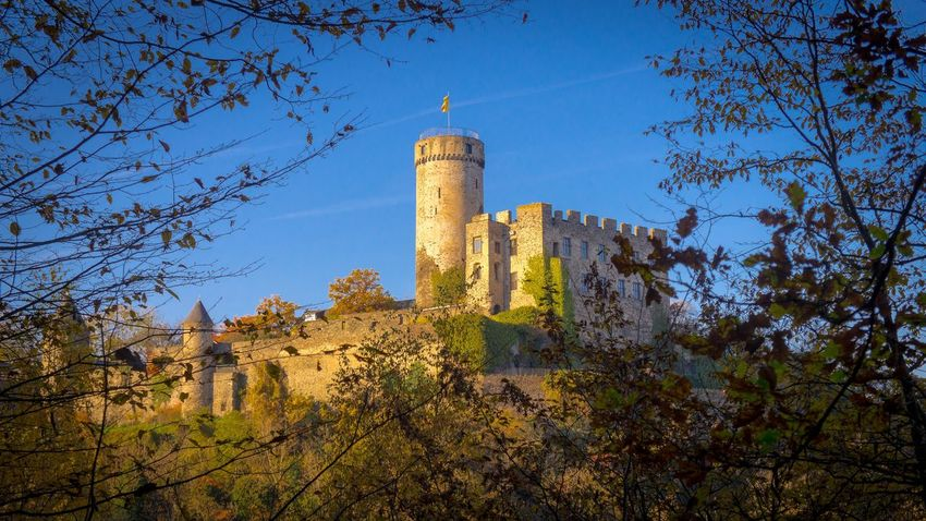 Pyrmant castle Architecture Autumn Colors Castle Fall Beauty Famous Place Fort History Outdoors