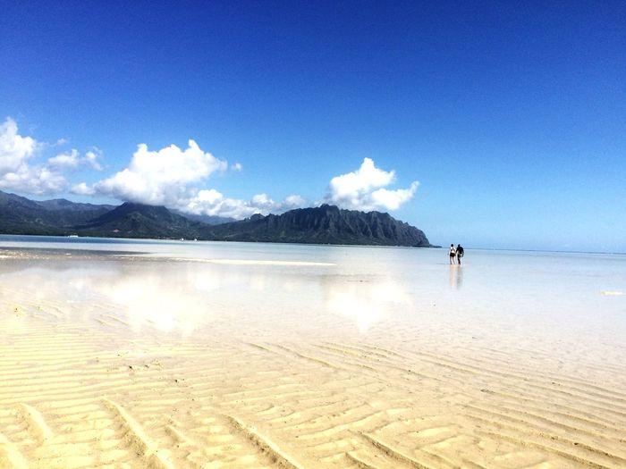 Eyeemhawaii Oahu, Hawaii Hawaii Kaneohe Kaneohesandbar Peace And Quiet Beautiful Day