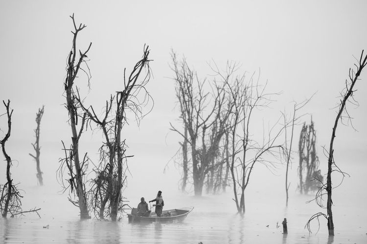 Boating in the dense fog Water Tree Bare Tree Sky Leisure Activity Nature Real People Lifestyles Waterfront Men Group Of People Beauty In Nature Tranquility Plant Branch People Scenics - Nature Non-urban Scene Outdoors Boat Fisherman Fog Dense Mist