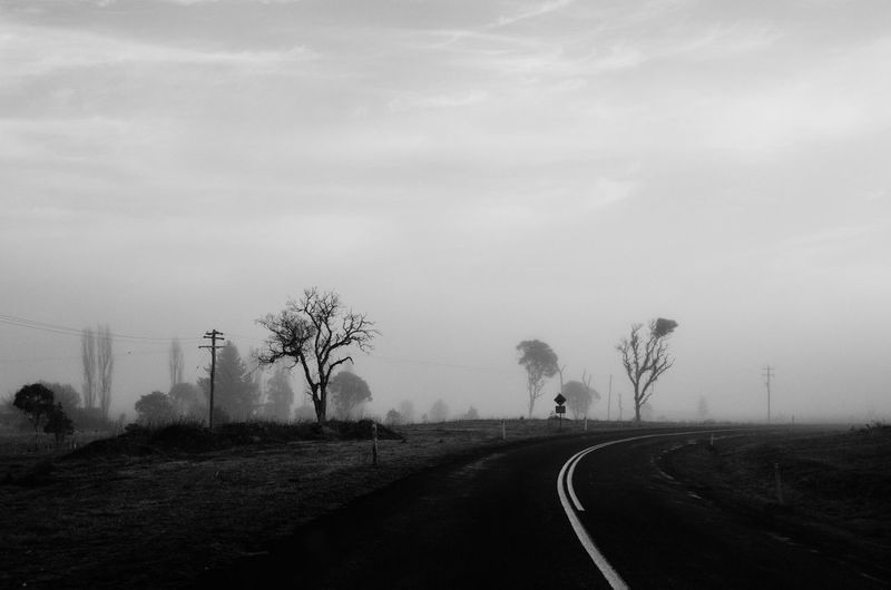 Blackandwhite Travel Transportation Road Tree The Way Forward Sky Direction Plant Nature Fog Road Marking No People Sign Symbol Day Marking Beauty In Nature Outdoors Cloud - Sky Street Diminishing Perspective