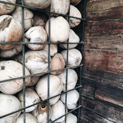 Close-up of coconuts by fence