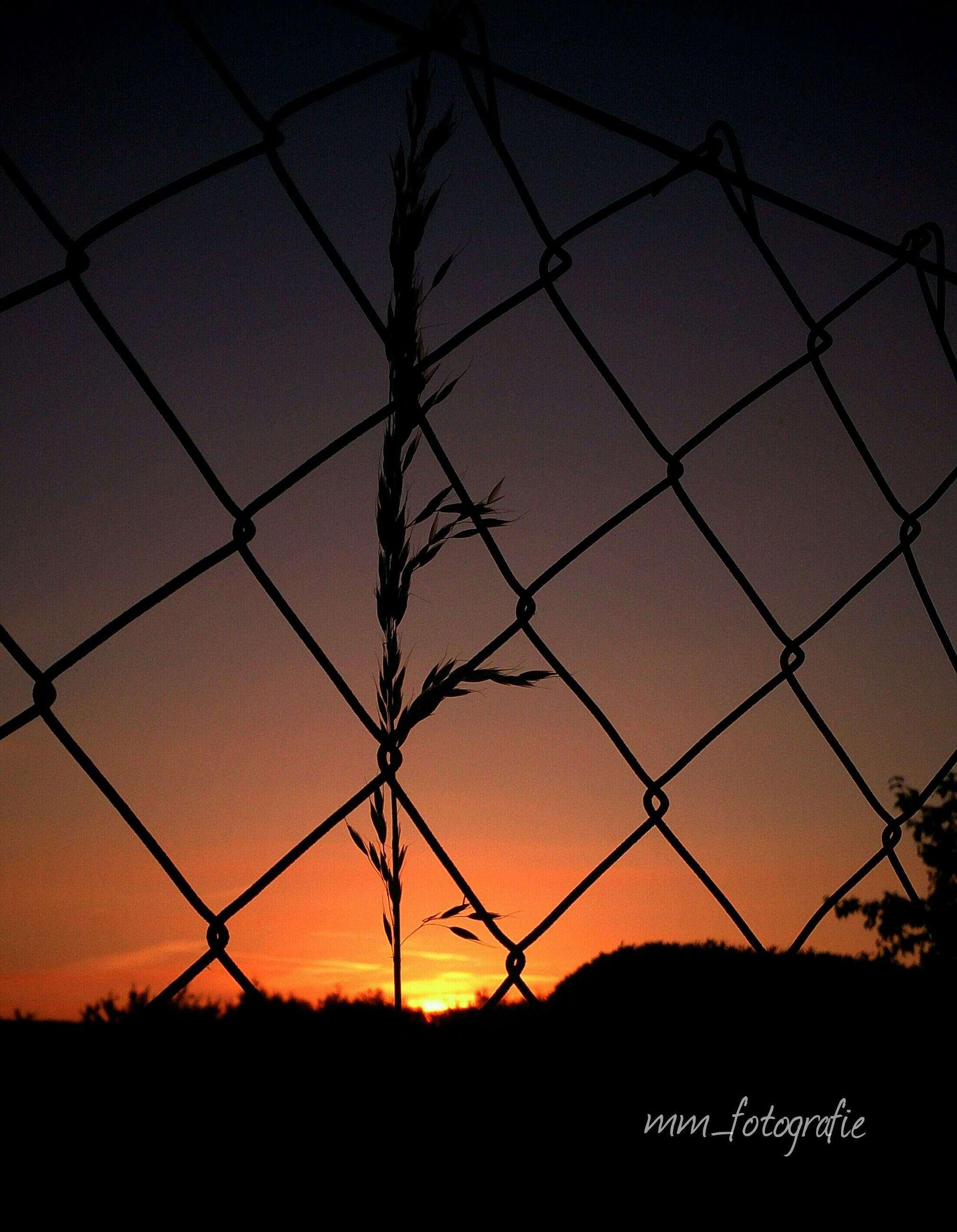 sunset, fence, silhouette, protection, chainlink fence, safety, security, metal, sky, orange color, barbed wire, backgrounds, landscape, tranquility, pattern, no people, nature, scenics, sun, outdoors