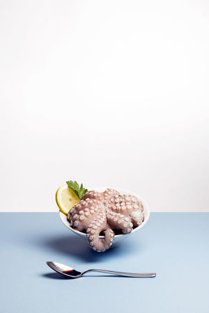 THÉVOZ—CHOQUET© Freshness Healthy Eating Nature No People Octopus Ready-to-eat Studio Shot White Background