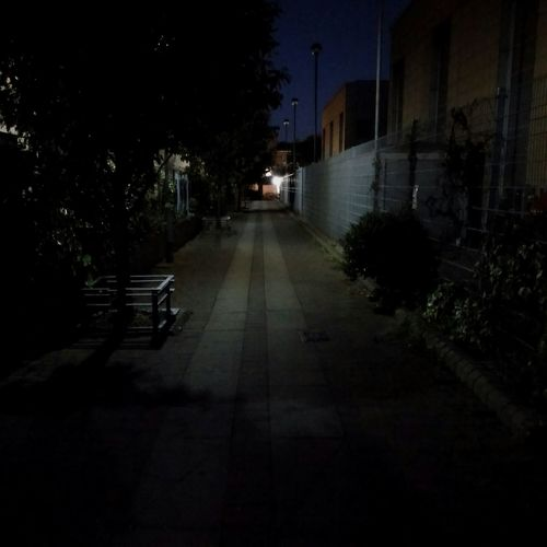 Alley Edinburgh