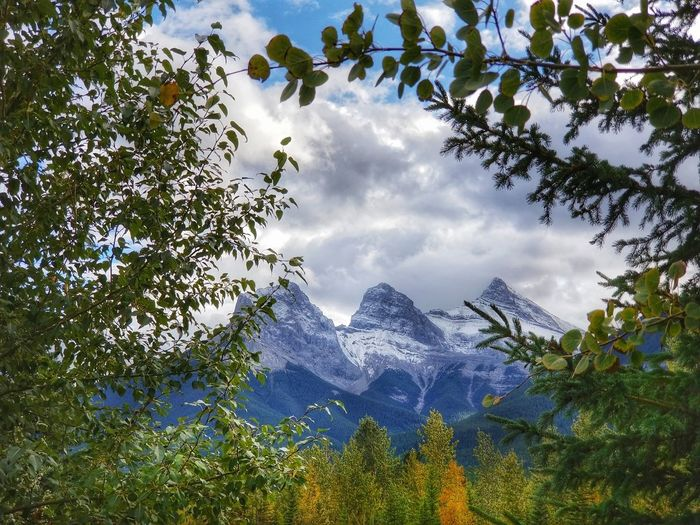 The Three Sisters mountain range Banff National Park  Canmore Alberta Canada Autumn🍁🍁🍁 Trees And Nature Landscape Mountain Autumn Collection Beauty In Nature Autumn Foliage Snowcapped Mountain Nature Autumn Colors Rockymountains Scenics Canada