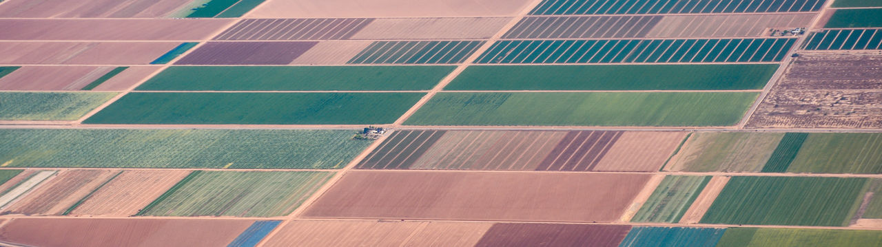 Farming from above Agriculture Farm Farm Life Farm Field Farmer Farmland Growing Patterns In Nature Acres Agricultural Land Airplane Airplane Shot Airplane View Airplaneview Crops Day Farm Fields Farming High Angle View Nature No People Outdoors Pattern Patterns & Textures Squares And Lines