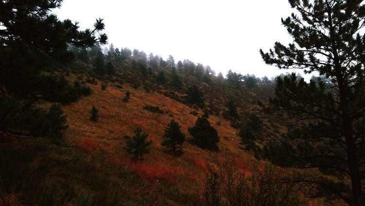 Horsetooth Hike Hiking Hikingadventures Nighthike Fall Fog Autumn Colors
