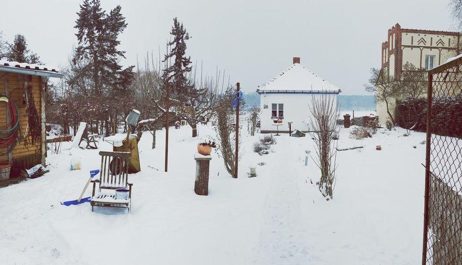 Wintergarden Garden Winter
