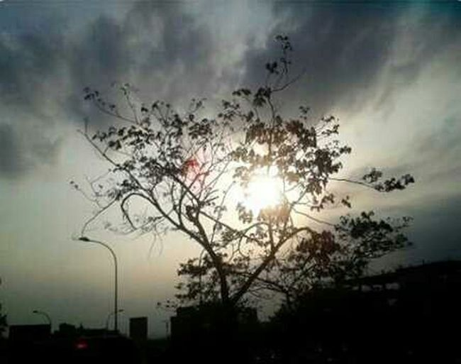 Clouds And Sky Tree Nature Batamisland Batam-Indonesia
