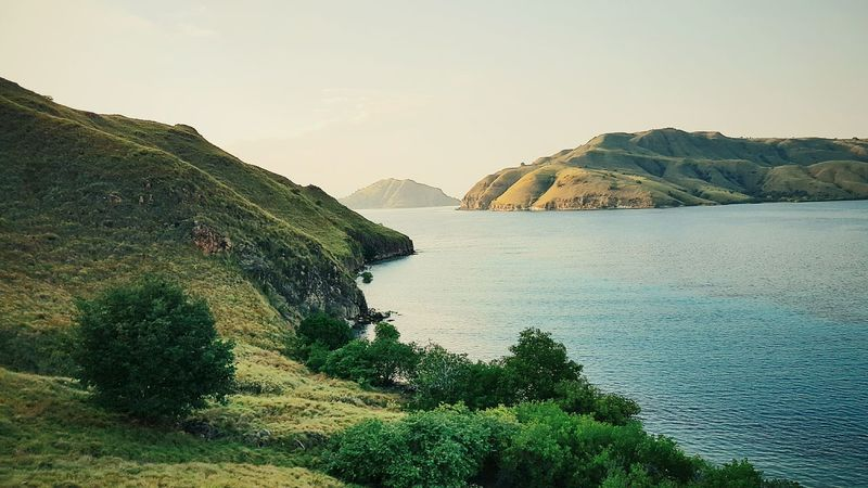Morning has story Mountain Tree Landscape Nature Beauty In Nature Social Issues Beauty Scenics Lake Outdoors Close-up Water No People Sky Day Labuanbajo Floreslabfloresindo